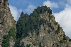 Gebirgsspitze von Adler ` s Felsen überwältigt mit Koniferenwald und Lichtung von Rila-Berg Lizenzfreies Stockbild