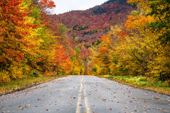 Gebirgsstraße durch bunte Bäume im Herbst Lizenzfreie Stockbilder