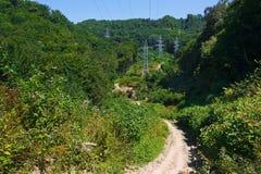 Gebirgsstraße im endlosen Sommerwald Stockbild