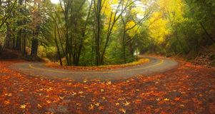 Gebirgsstraße im Herbst Lizenzfreie Stockfotos