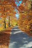 Gebirgsstraße im Herbst Stockbilder