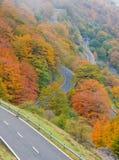 Gebirgsstraße im natürlichen Park von Urbasa-Andia Stockfoto