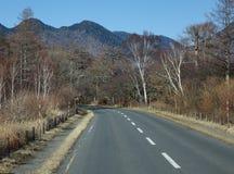 Gebirgsstraße mit Kieferwald in Toyama, Japan Lizenzfreie Stockbilder