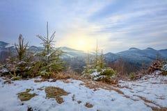 Gebirgsstrecke und -bäume zur Sonnenuntergangszeit, Winterlandschaft stockbilder