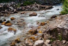 Gebirgsstrom, der über gelbe Felsen fließt Lizenzfreies Stockfoto