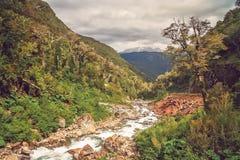 Gebirgsstrom in der Schlucht in Chile stockfotografie