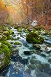 Gebirgsstrom im Herbst, Julian Alps, Italien stockfotografie