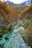 Gebirgsstrom im Herbst, Julian Alps, Italien lizenzfreies stockfoto
