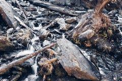 Gebirgsstrom im Wald lizenzfreies stockbild