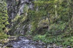 Gebirgsstrom im Wald-HDR-Farbfoto lizenzfreie stockfotografie