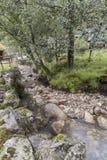 Gebirgsstrom nahe dem Magma-Geo-Park außerhalb Stavangers Norwegen lizenzfreies stockfoto