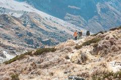 Gebirgstal-grasartige Steigung und Körper von Wanderern auf Ridge lizenzfreie stockfotos