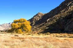 Gebirgstal-Herbst stockfoto