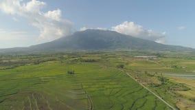 Gebirgstal mit Ackerland in den Philippinen Lizenzfreies Stockbild