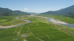 Gebirgstal mit Ackerland in den Philippinen Stockbild