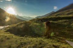 Gebirgstouristen gehen zu den Bergen am frühen Morgen Dieses ist ein sehr schwieriger Aufstieg Lizenzfreie Stockfotos