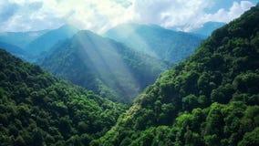 Gebirgswald im Nebel und in den Wolken Vogelperspektive von grünen übermäßighügeln mit weißem Nebel, Wolken Guria-Region, Georgia lizenzfreies stockbild