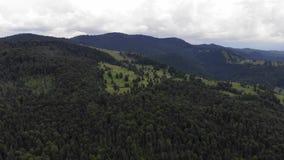 Gebirgswaldszene, Ansicht von oben stock video footage