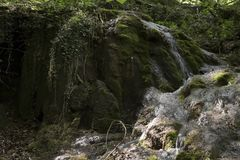Gebirgswasserfall auf Moos lizenzfreie stockbilder