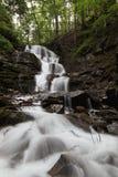 Gebirgswasserfall im grünen Wald. Stockfotografie