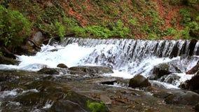 Gebirgswasserfall im tiefen Waldwasserstrom auf Gebirgsfluss stock footage