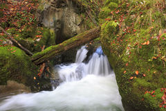 Gebirgswasserfall. schnelles Flusswasser Stockbild
