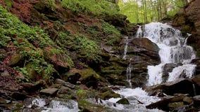 Gebirgswasserfalllandschaft Wilder Wasserstrom auf Felsen stock video footage