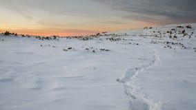 Gebirgsweg im Schnee bei dem Sonnenuntergang Lizenzfreies Stockfoto