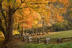 Gebirgsweiden mit Zaun der aufgeteilten Schiene. Stockfotografie