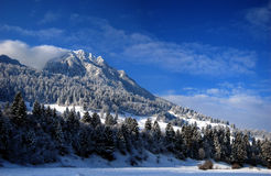 Gebirgswinter-Panorama Lizenzfreies Stockbild