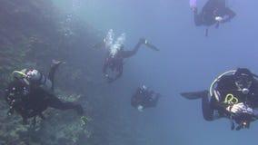 Gebissen in den Kapazitäten Angthong Nationalpark Unerkannter Taucher steigt auf der Oberfläche Wasser Underwater tauchen stock video footage