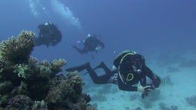 Gebissen in den Kapazitäten Angthong Nationalpark Unerkannter Taucher steigt auf der Oberfläche Wasser Underwater tauchen stock video
