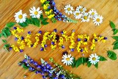 Geblühter Sommer Aus den Feldblumen heraus Stockbild