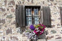 Geblühtes Fenster Stockbild