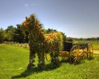 Geblühtes Pferd (mg_0030_1_2_) Stockbild