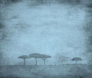 Gebleekt beeld van bomen op een uitstekend document Stock Foto's
