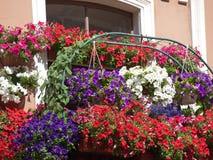 Gebloeide balkons typische huizen Stock Foto's