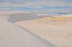Gebogen duinen met blauwe hemel Stock Foto