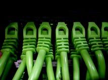 Gebogen greens Stock Fotografie