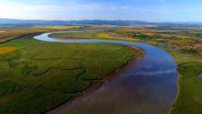 Gebogen rivieren en groen gras Stock Fotografie
