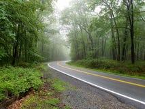 Gebogen vlotte weg met heldere gele en witte noteringen op grijs asfalt in groen de zomerbos stock fotografie