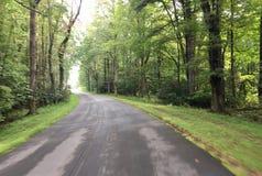 Gebogen weg die in het bos gaan royalty-vrije stock afbeeldingen