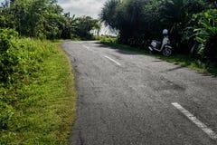 Gebogene Straße in den Tropen Straßendrehung in der Waldlandschaft Straße im tropischen Wald im Sonnenlicht Stockfoto