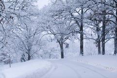 Gebogene Straße, fallender Schnee im Park. Lizenzfreie Stockfotografie