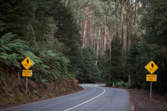Gebogene Straße mit zwei Verkehrsschildern Lizenzfreie Stockfotos