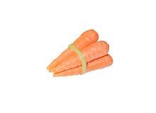 Gebonden wortelen Royalty-vrije Stock Fotografie