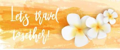 Geborstelde reisachtergronden met bloemen Stock Afbeeldingen