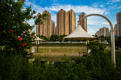 Gebouwen en Groenland naast Suzhou-rivier onder blauwe hemel en witte wolk in Shanghai Royalty-vrije Stock Foto