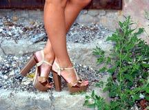 Gebräunte weibliche Beine in den Fersen Stockbild