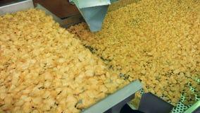 Gebraden chips die van industriële transportband bij een voedselfaciliteit vallen stock videobeelden